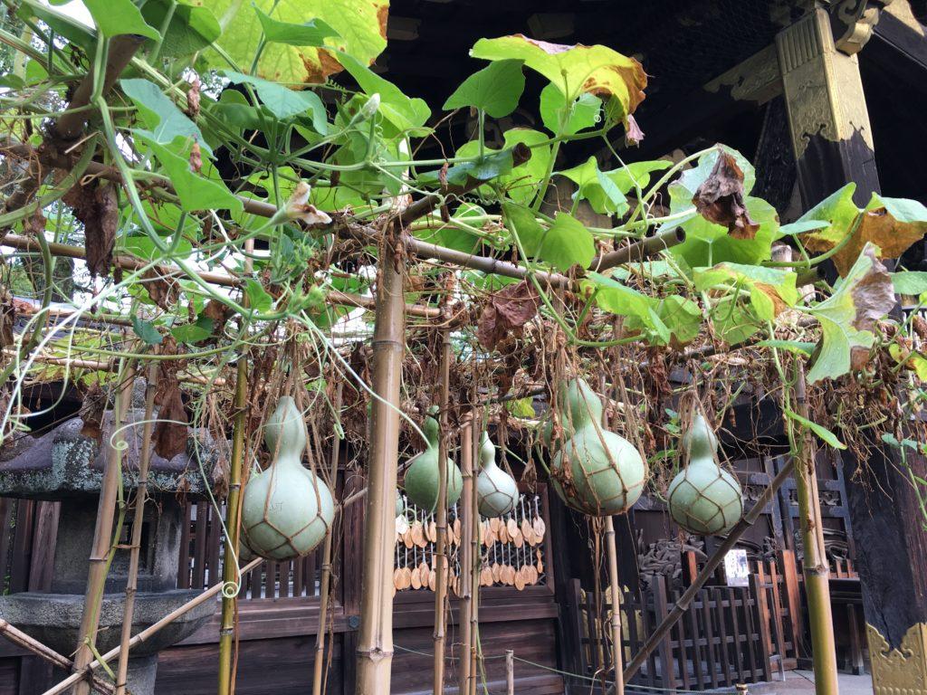 豊国神社のひょうたん