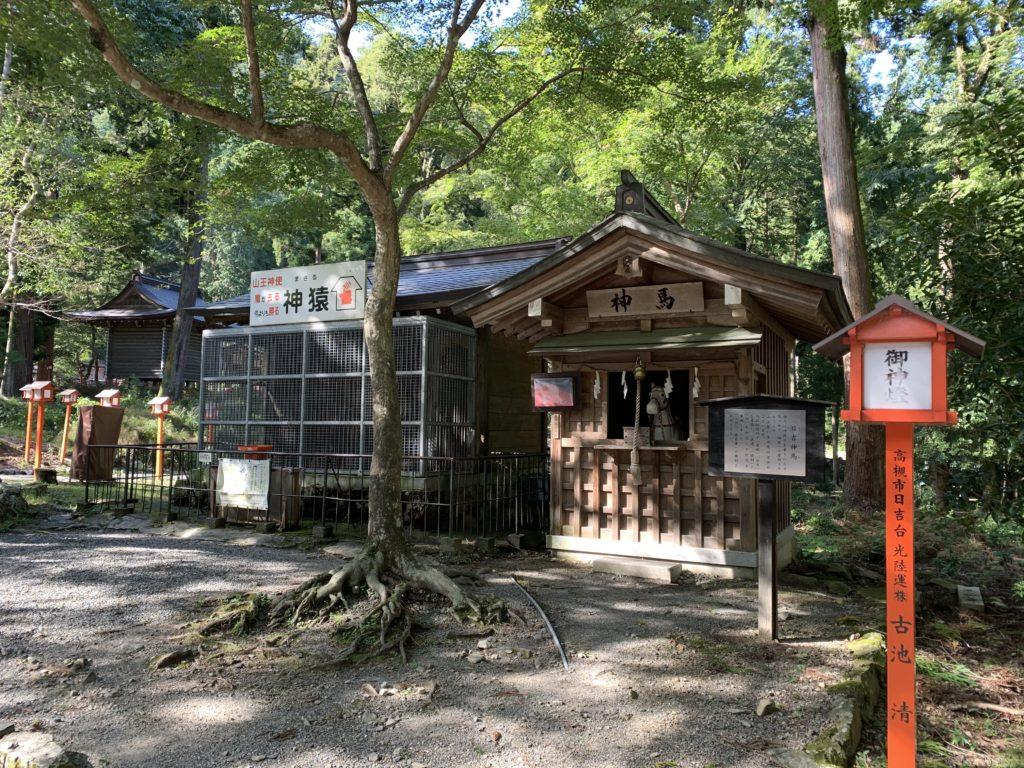 日吉大社の神馬舎と神猿舎
